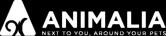 logo_white_version